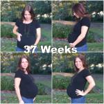 Dear BabyBug 2.0 (37 Weeks)
